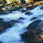 Big Thompson River Rocky Mountain Natnl Park