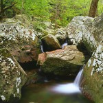Canyon Boulders and Stream