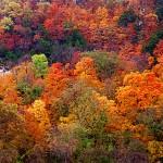 Missouri River Bluffs