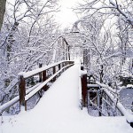 Mark Twain National Forest:  Footbridge After Fresh Snowfall